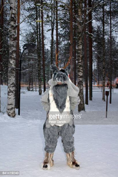 An epmloyee at the Santa Claus Village in Lapland dressed as a reindeer It is also the location of the main Santa Claus Post Office where around half...