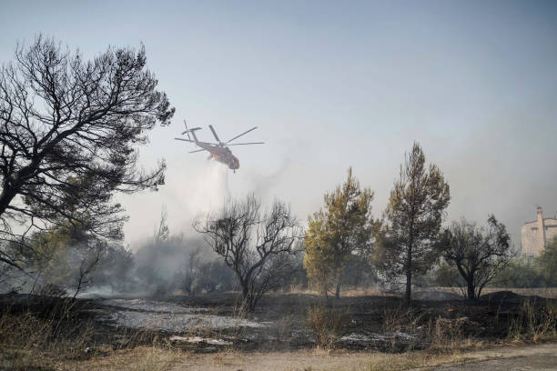 GRC: Wildfires Reach Outskirts of Athens During Heatwave