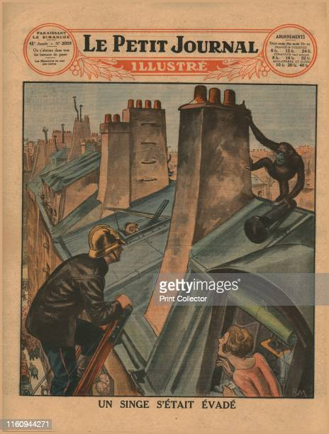 An escaped chimpanzee 1930 'Un Singe S'Était Évadé' A fireman climbs a ladder to try and catch an ape on a roof as a woman watches from a window Back...