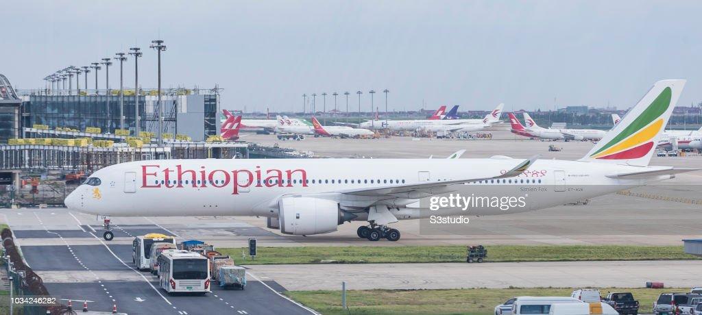 Shanghai Pudong International Airport feature : News Photo