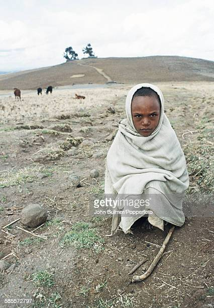 An Ethiopian boy watches his herd in the Central Highlands of Ethiopia circa 1965