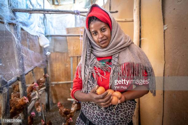 An Ethiopian farmer holding eggs from her chicken coop Debre Berhan Ethiopia