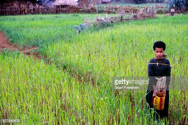 An Ethiopian girl in the Northern Highlands carries water to her village Tenquao Meskel