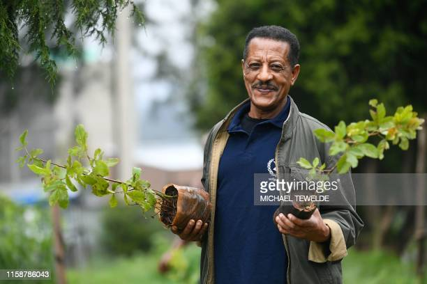 TOPSHOT An Ethiopian man poses holding tree seedlings during a national treeplanting drive in the capital Addis Ababa on July 28 2019 Ethiopia plans...