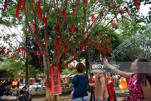 An ethnic Chinese girl throws a red ribbon to the tree of hope as Chinese believes will bring wishes and blessing at the Fo Guang Shan Dong Zen...