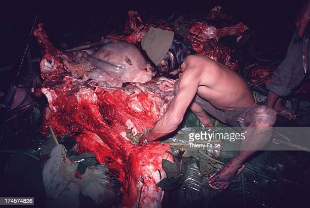 An ethnic Mon soldier from the Mon National Liberation Army carving up the carcass of a young elephant trapped and killed in the jungle The meat will...