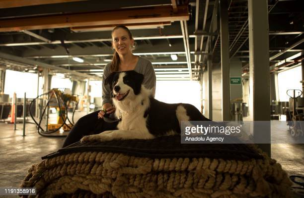 An evacuee from Mallacoota with her dog onboard MV Sycamore in Victoria Australia on January 3 2020 The Australian Defence Force commenced has...