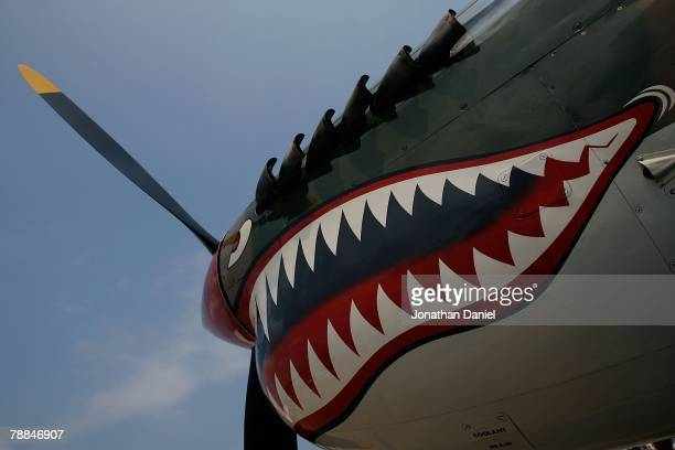 "An example of ""nose art"" on a World War II-era P-40 Warhawk, painted in the colors of the American Volunteer Group the ""Flying Tigers"" during the..."