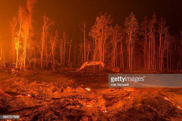 An excavator is seen as peatland forest is cleared by burning for a palm oil plantation at a company's grounds on November 1 2015 in the outskirts of...