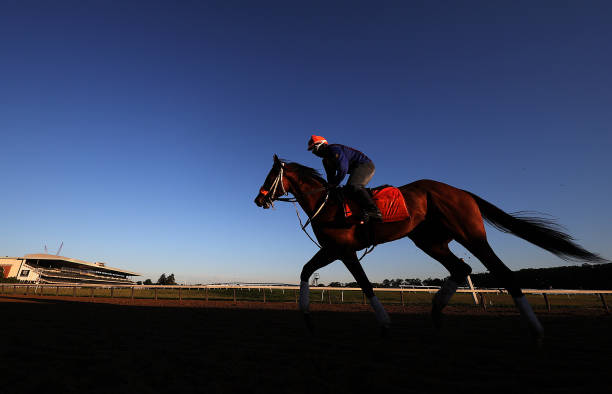 NY: Belmont Park Opens For Training