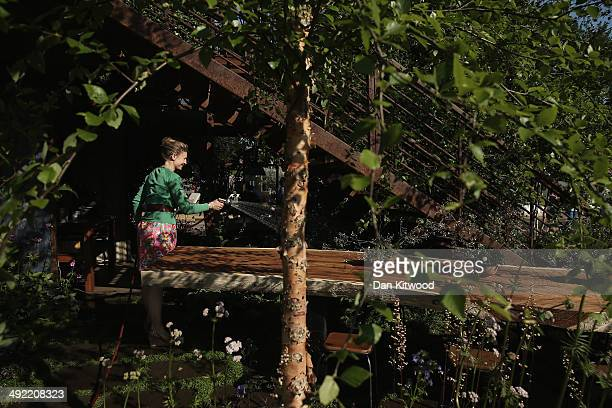 An exhibitor waters her garden on a stand at the 2014 Chelsea Flower Show at Royal Hospital Chelsea on May 19 2014 in London England The prestigious...