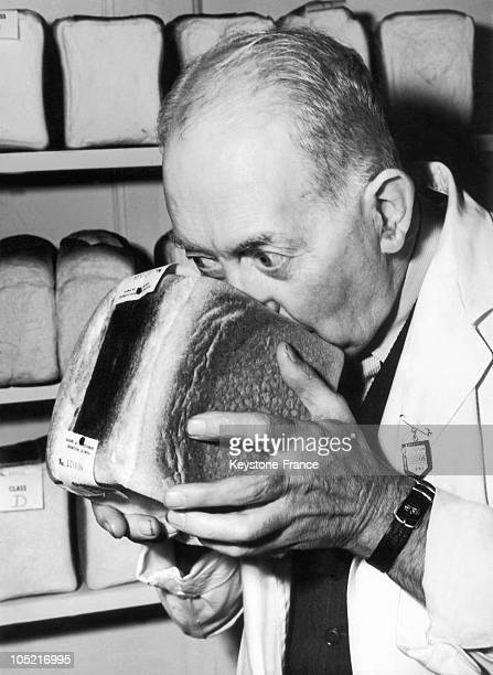 An Expert Smelling The Bread Before Judging It On The Baker Contest In England On October 2 1951