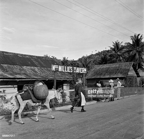 An exterior view of Miss Millie's Tavern as a local man leads his donkey in Kingston Jamaica