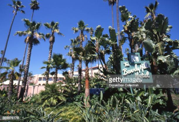 An exterior view of palm trees surrounding the Beverly Hills Hotel sign on Sunset Boulevard in September 1995 in Los Angeles California