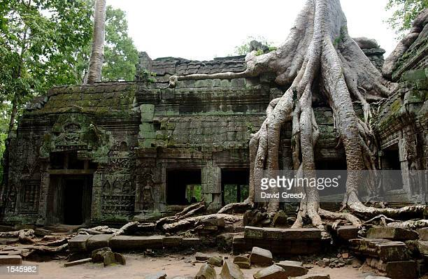 An exterior view of the ruins of Ta Phrom is shown May 27 2002 in Angkor Cambodia While renovation work has been done for the last century on many of...