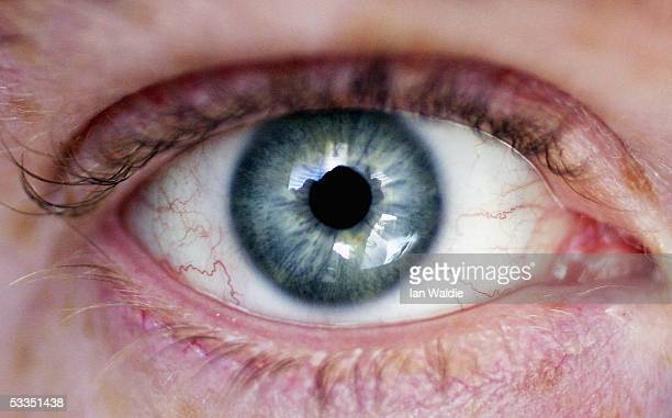 An eye is seen August 11 2005 in Sydney Australia The Australian Federal Government are considering including biometric data such as fingerprints...