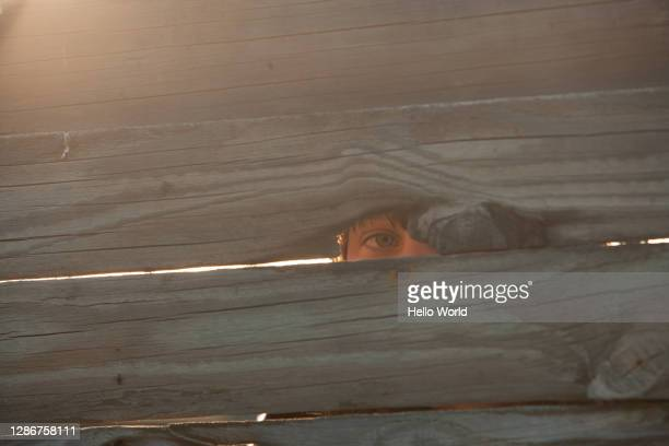 an eye peeping through a crack in the wood - offbeat stock pictures, royalty-free photos & images