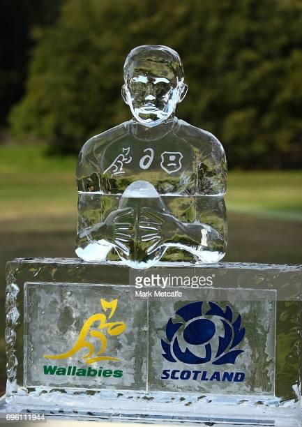 An ice statue of Bernard Foley is seen during an Australian Wallabies media opportunity at Lough Playing Fields on June 15 2017 in Sydney Australia
