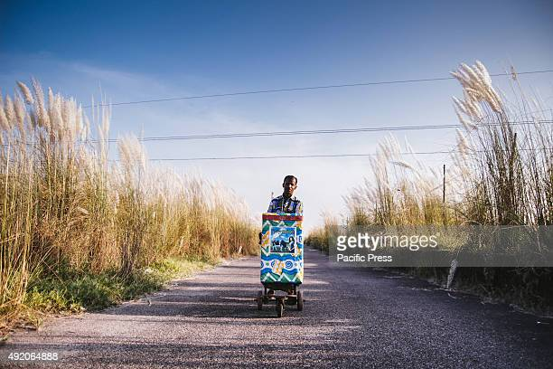 KERANIGANJ DHAKA BANGLADESH An icecream seller with his cart on the road between catkin flowers A catkin or ament is a slim cylindrical flower...
