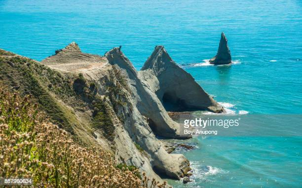 an iconic landscape of cape kidnappers in hawke's bay region of new zealand. - hawkes bay region stock-fotos und bilder