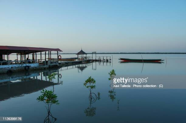 an idyllic pier by the river - gambia stock photos and pictures