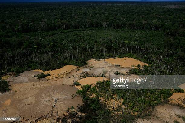 An illegal gold mining camp stands in a cleared area of rainforest in this aerial photograph taken above the Amazonian National Reserve buffering...