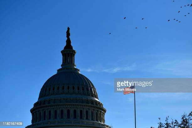 An illuminated American flag flies at the US Capitol Building as birds fly overhead on November 13 2019 in Washington DC In the first public...