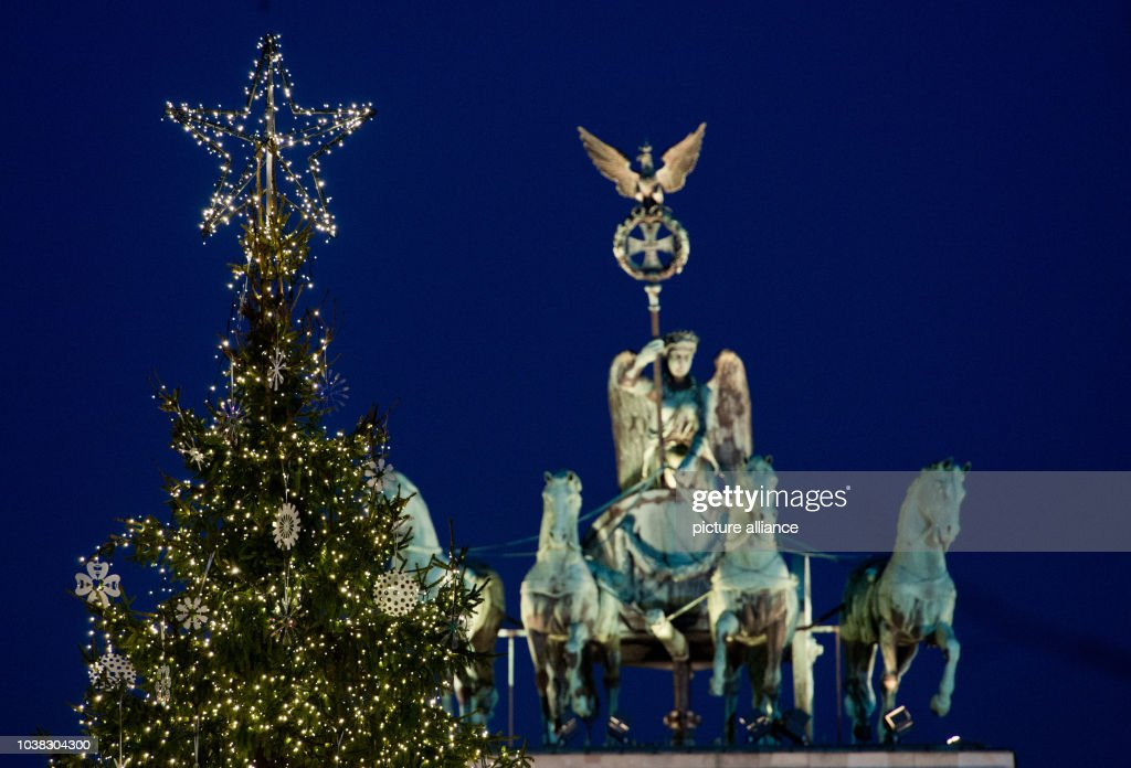 christmas tree in front of brandenburg gate in berlin news photo