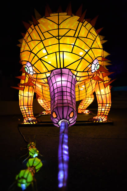 AUS: Vivid Sydney 2019 Media Previews