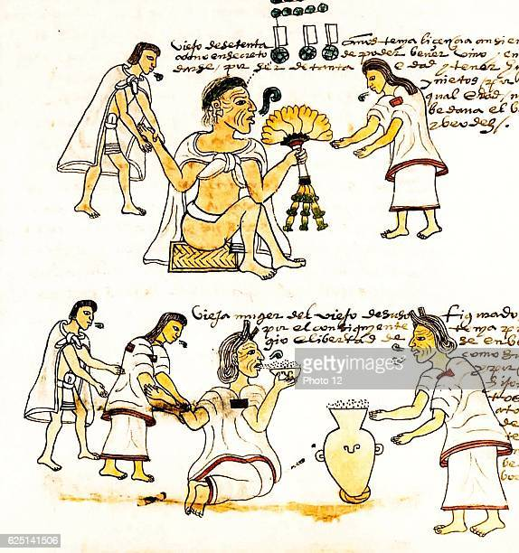 An illustration from Codex Mendoza depicting elderly Aztecs smoking and drinking pulque The Codex Mendoza was created in 1553 after the Spanish...