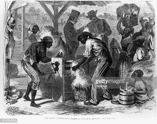 An illustration from Harper's Weekly magazine showing slaves operating the first cotton gin on a cotton plantation