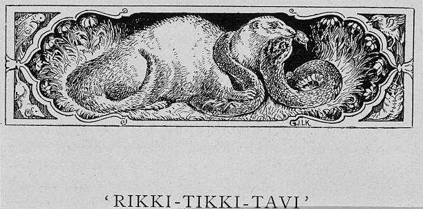 An Illustration of a Mongoose and a Snake from Riki...