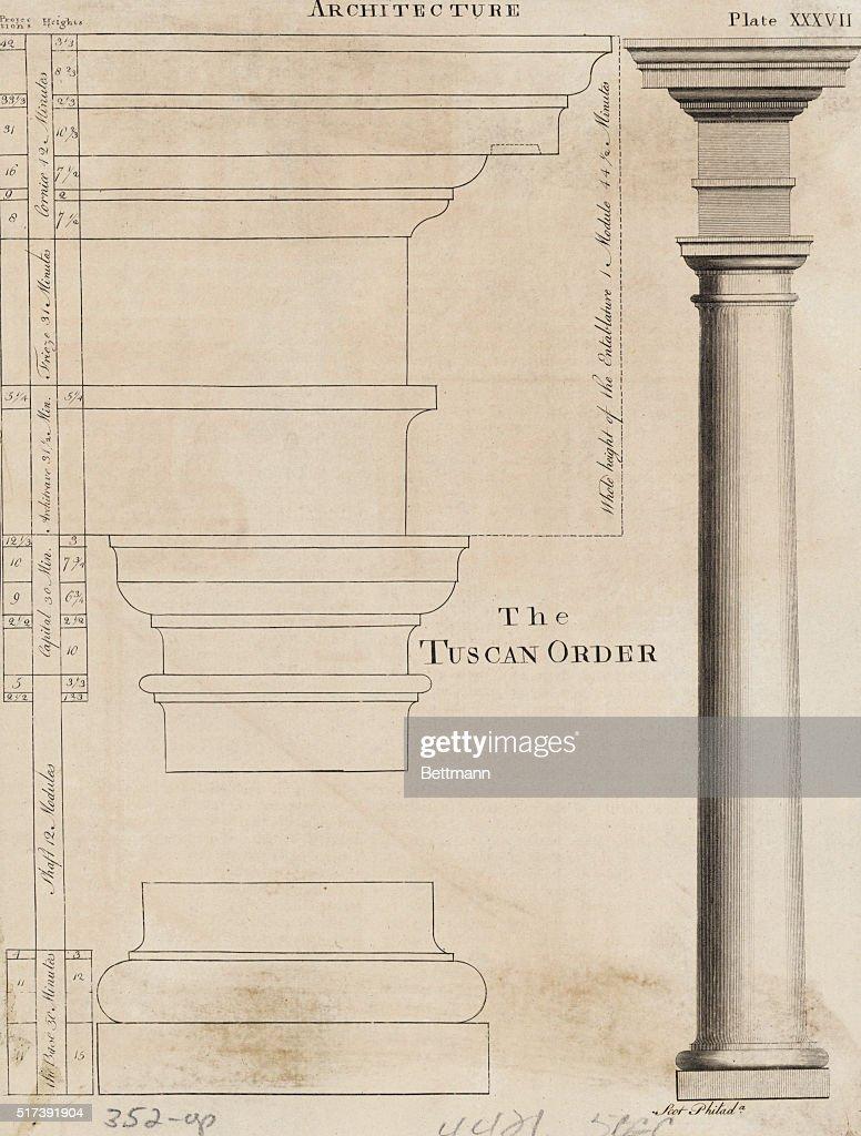 illustration tuscan order of columns