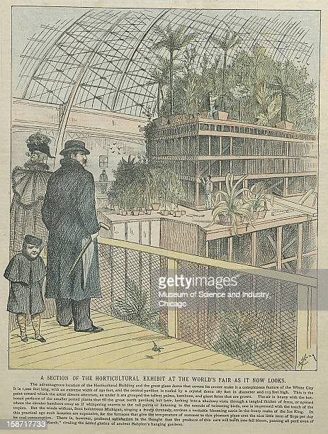 An illustration titled 'A Section Of The Horticultural Exhibit At The Worlds Fair As It Now Looks' published on Sunday January 29 in the InterOcean...