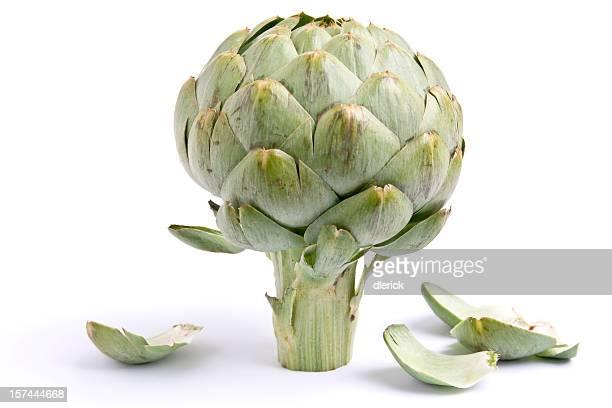 Une image de l'artichaut et feuilles sur fond blanc