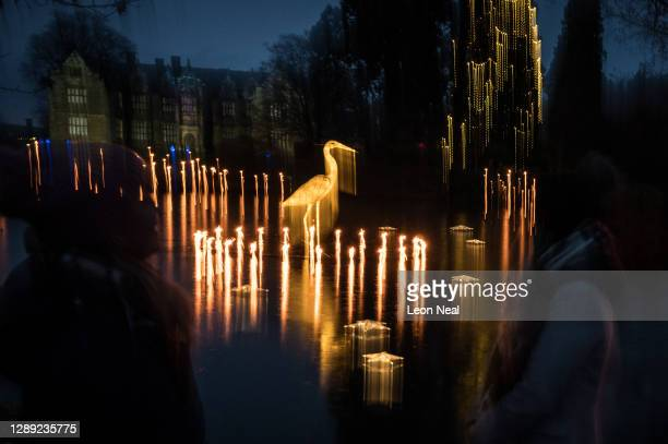 """An in-camera long exposure image shows glowing model birds positioned in a pond during the launch of """"Glow Wild"""" at Wakehurst on December 03, 2020 in..."""