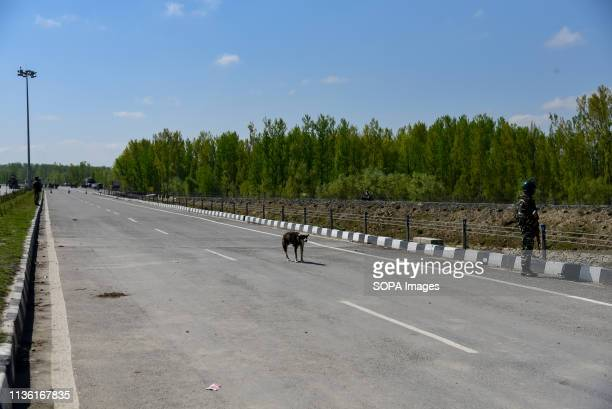 An Indian army man are seen standing alert to safeguard the movement of Indian convoys at the National Highway on the outskirts of Srinagar The...