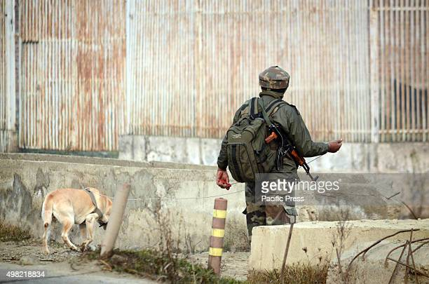 An Indian army soldier along with a sniffer dog searches the area where an Improvise Electronic Device was found in Narbal on the outskirts of...