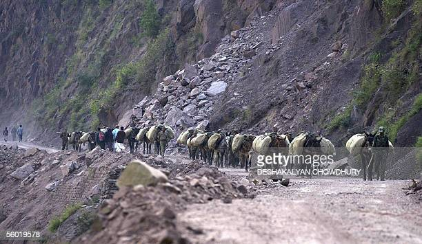 An Indian army soldier leads a mule train loaded with earthquake relief material and other necessities through the mountains to villages near the...