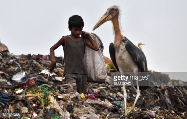 An Indian boy sorts through garbage next to a greater adjutant stork at a large dump in the northeastern state of Assam in Guwahati on June 4 on the...