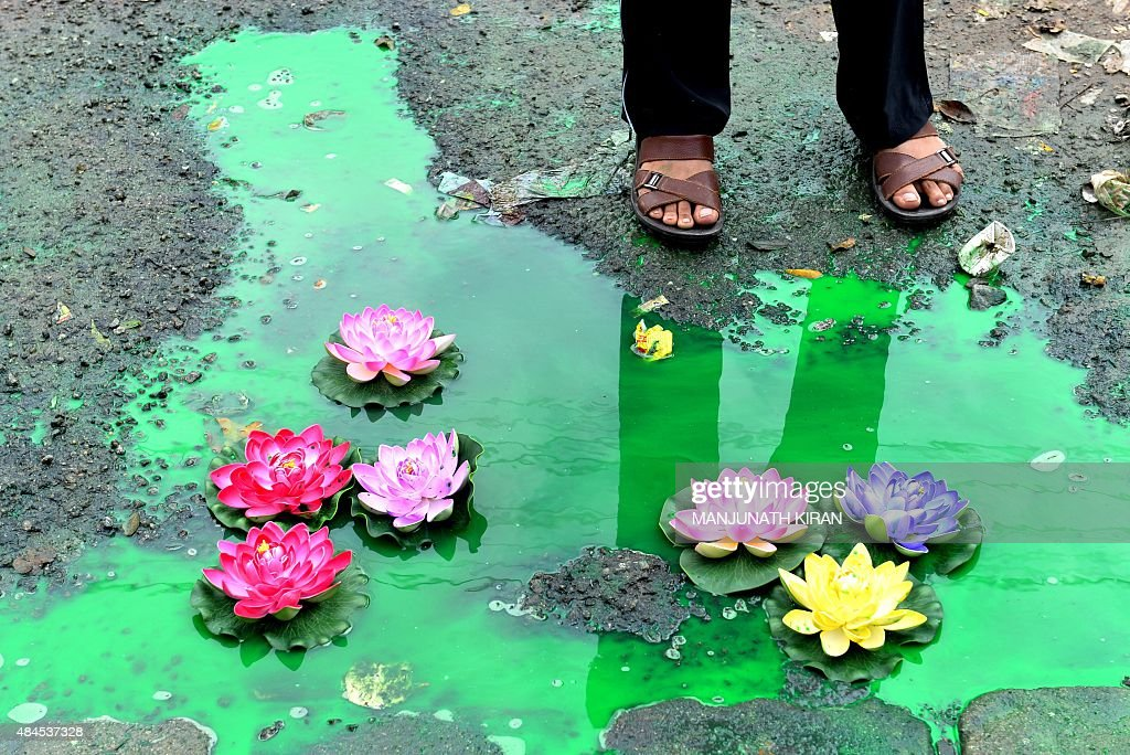 An Indian bystander looks at an art installation created by artist Baadal Nanjundaswamy by placing artificial lotus flowers over a pothole filled with sewage at a pedestrian junction on Old Airport Road in Bangalore on August 20, 2015. Baadal is known for his civic-sensitive art installations in Bangalore and Mysore which have drawn public attention and cause indirect embarrassment to local authorites. AFP PHOTO / Manjunath KIRAN