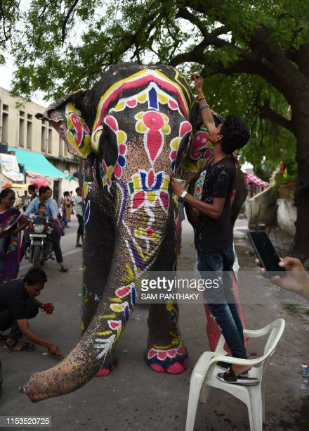 An Indian elephant is painted ahead of the annual Hindu festival Rath Yatra in Ahmedabad on July 3 2019 Rath Yatra an annual Hindu festival is...
