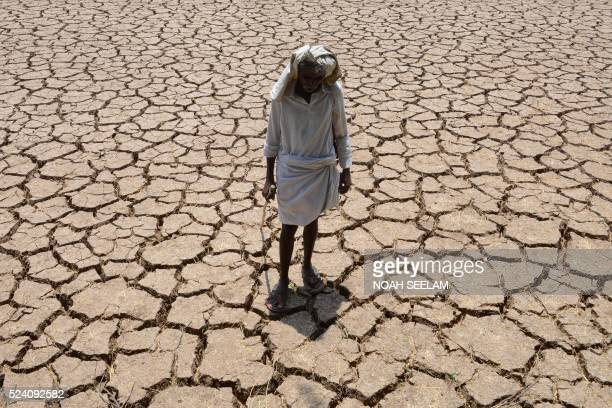 An Indian farmer poses in his dried up cotton field at Chandampet Mandal in Nalgonda east of Hyderabad on April 25 in the southern Indian state of...