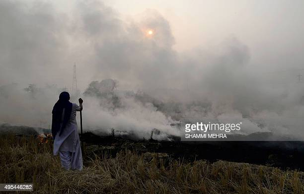 An Indian farmer watches burning paddy stubble in a field on the outskirts of Jalandhar in Punjab on November 3 2015 New Delhi and surrounding areas...