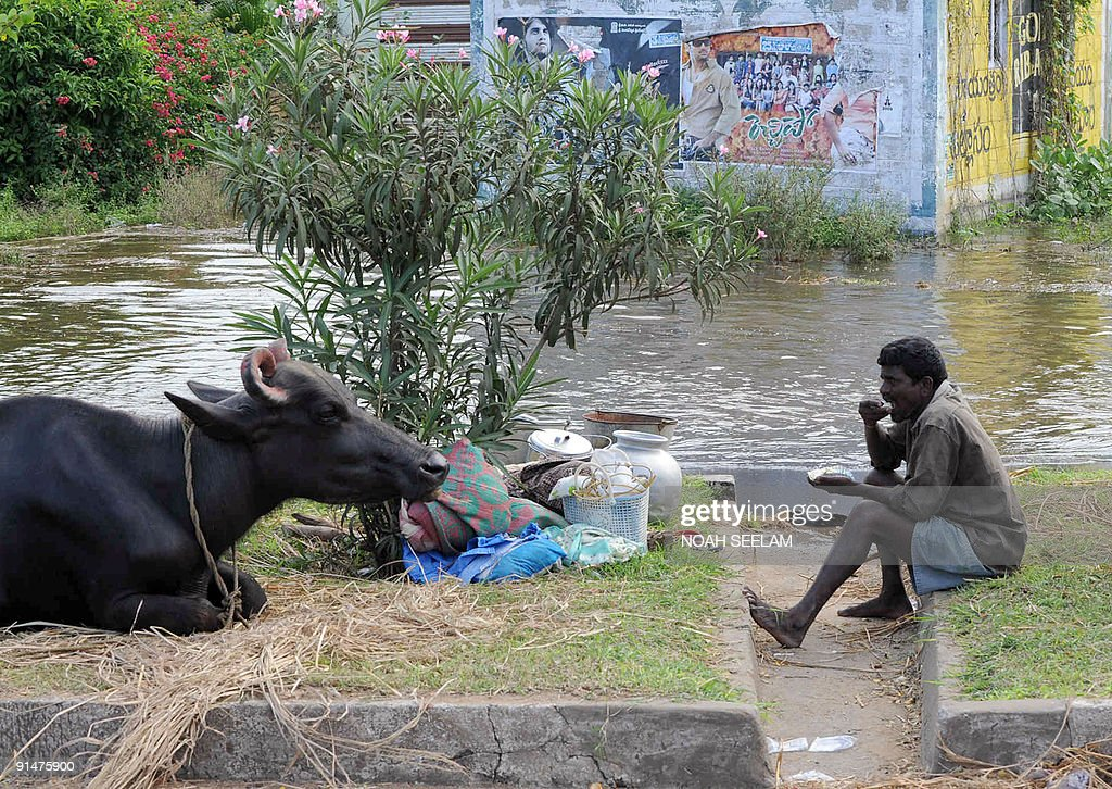 An Indian flood affected villager sits with his livestock in the town of Ibrahimpatnam in Vijayawada District, some 300 kms from Hyderabad on October 6, 2009. Devastating floods that killed more than 230 people in southern India have left close to 1.5 million others homeless, officials said. The floods, triggered by days of torrential rain, have inundated swathes of Karnataka, Andhra Pradesh and Maharashtra states, causing mass evacuations and leaving hundreds of thousands dependent on relief camps. AFP PHOTO/Noah SEELAM