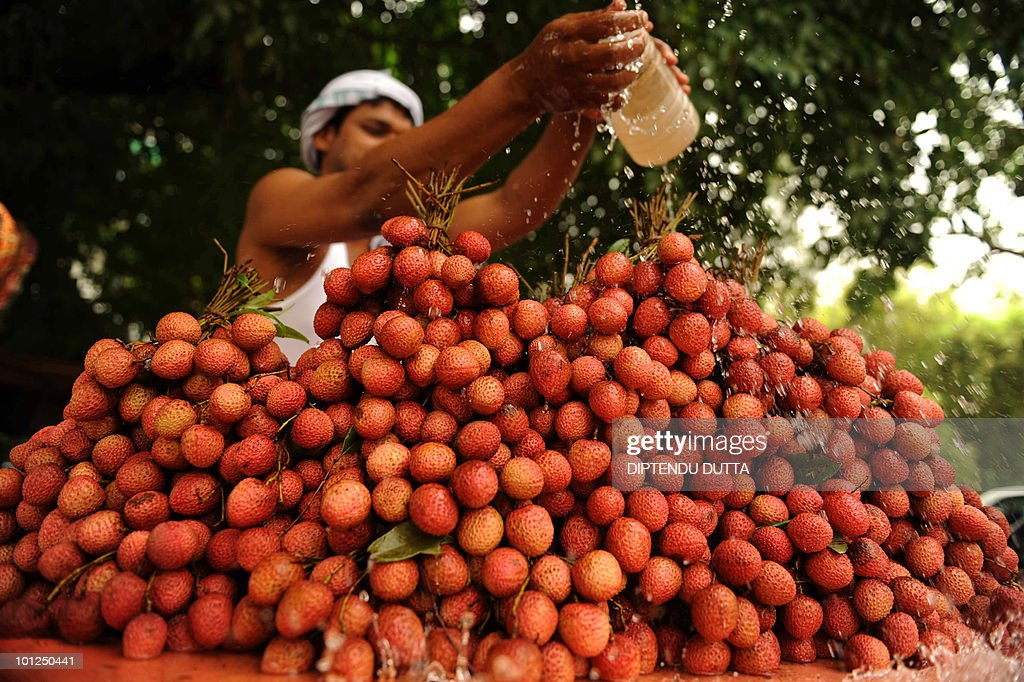 An Indian fruit seller pours water over lychees at a roadside cart in Allahabad on May 29, 2010. The heat wave continued across the northern belt as three persons perished due to sunstroke in Rajasthan while the city of Hissar recorded its hottest day in over a decade at 48.1 degrees Celsius. AFP PHOTO/Diptendu DUTTA