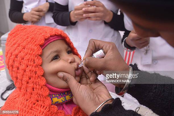 An Indian health worker administers polio drops to a child during a polio immunisation programme in Amritsar on January 17 2016 During the Pulse...