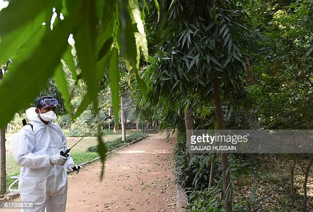 An Indian health worker sprays pesticides inside the Deer Park which is temporarily closed for visitors as a precautionary measure amidst a bird flu...