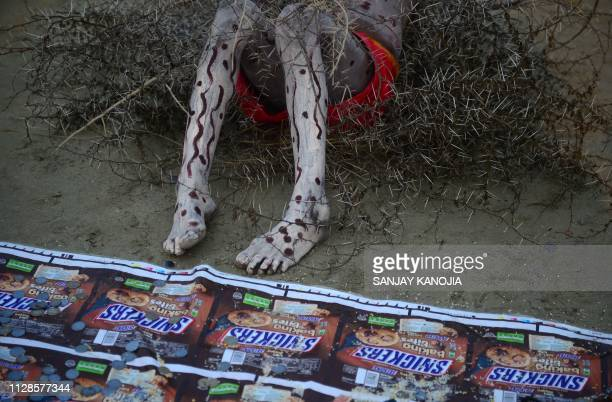 An Indian Hindu devotee lies on a bed of thorns at Sangam the confluence of the Ganges Yamuna and mythical Saraswati rivers on the occasion of Maha...