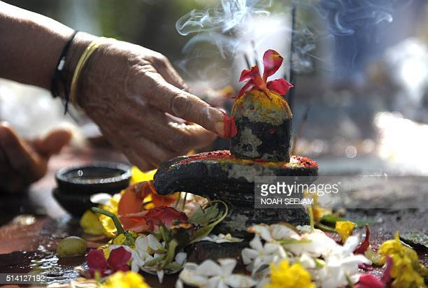 An Indian Hindu devotee offer prayers to a Shiva Lingam, a stone sculpture representing the phallus of Hindu god Lord Shiva, to mark the Maha...
